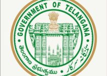 Governor of Telangana career